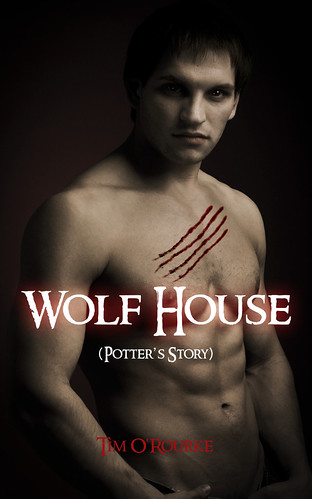 Wolf House by carlesbarrios