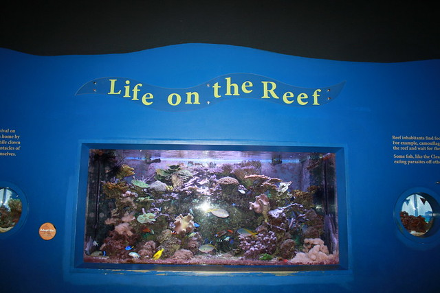 The Living Planet Aquarium Flickr Photo Sharing