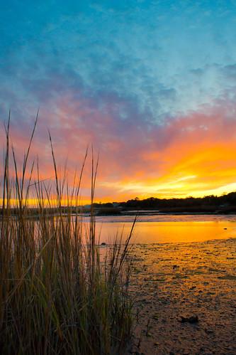 sunset nature landscape day cloudy sony southcarolina alpha rftrudeau sonya65