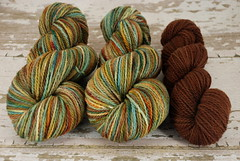"""Orchard Harvest"" 8.25oz Mountain Meadow Wool + 2.2oz trim"