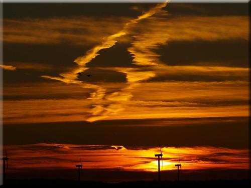 light sunset licht sonnenuntergang