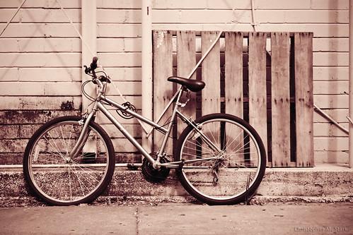 glass bike bicycle canon rebel alley fsu alleyway l canonrebel 2012 ocala marioncounty 24105mm canonef24105mmf4lisusm marioncountyflorida ocalafl ocalaflorida downtownocala marioncountyfl rebelt1i t1i canonrebelt1i