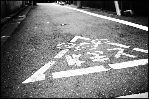 Bicycles should stop here