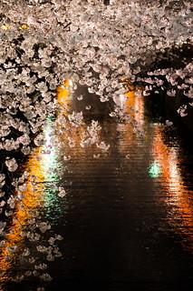 中目黒桜まつり