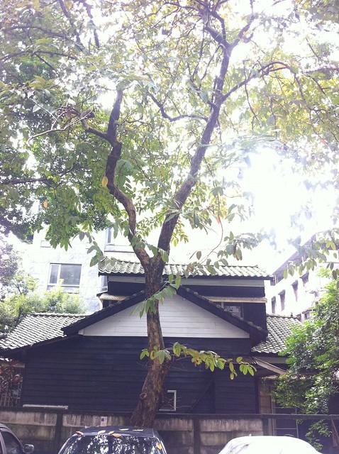 前台大理學院院長、中央研究院副院長羅銅壁的家──二層樓的日式老屋