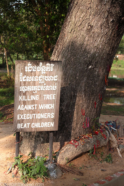 Guards beat children to death against this tree, then tossed them into the nearby pit.