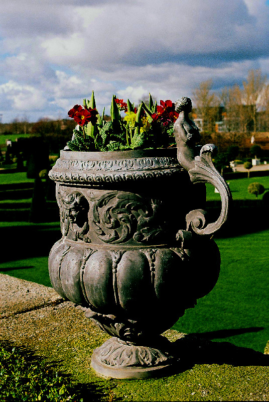 Flower Pot at Imma, High Saturation