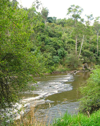 Warrandyte - Yarra River 2