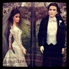 Wedding Bella & Edward dolls! #nerdalert