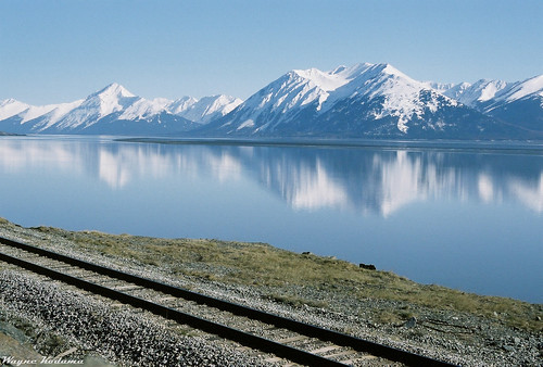 Along the Alaska Railroad Tracks