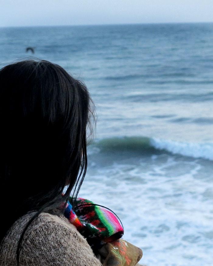 aa-catshirt-beach1