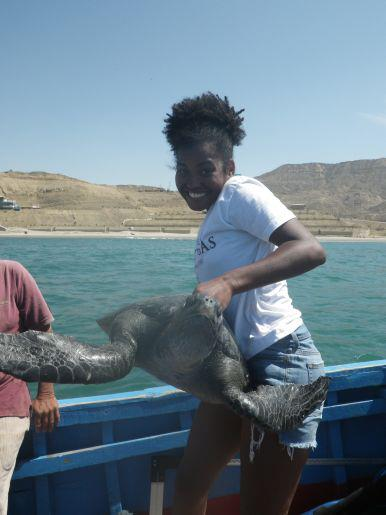 Tagging Turtle in El Ñuro