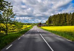 Countryside, Skåne, Sweden