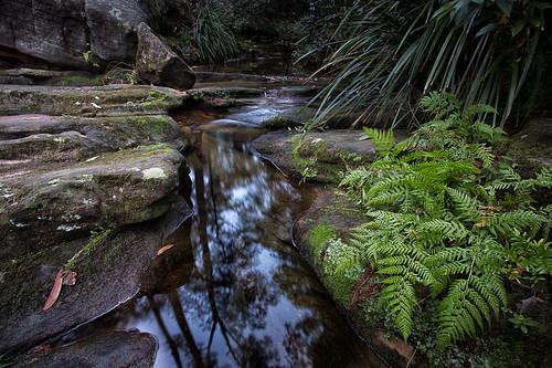 longexposure water landscape au australia nsw newsouthwales castlehill cattaicreek