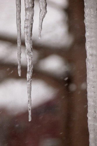 trifork icicle