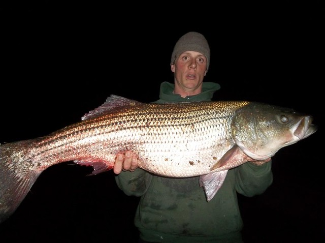 Dnr weekly fishing report autos post for Michigan dnr weekly fishing report