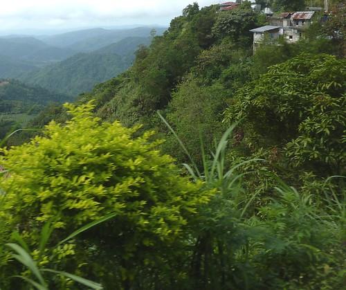 Luzon-San Fernando-Baguio (38)