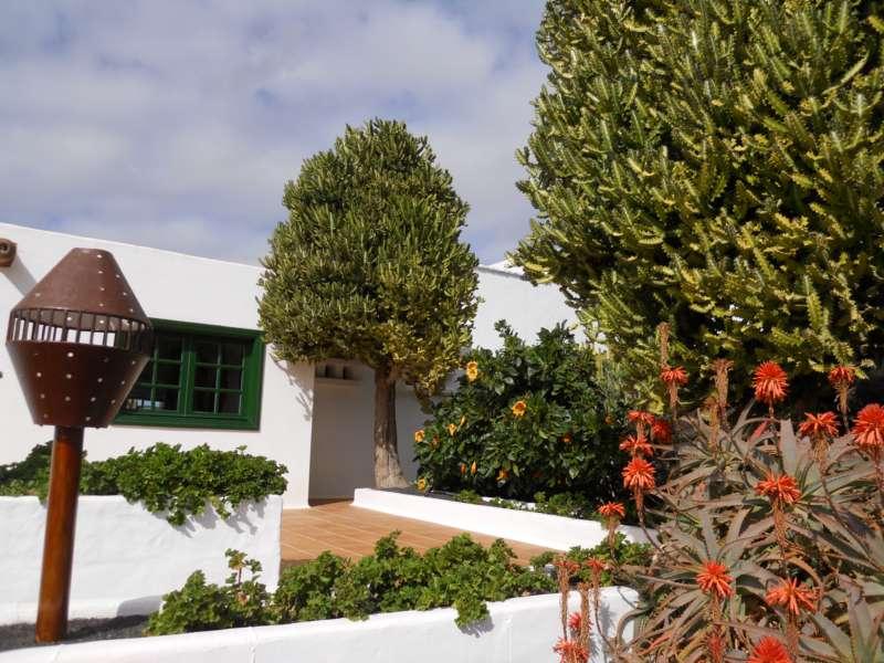 Jardines Fundacion César Manrique