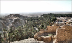 From the top of the Oasi - Tamerza