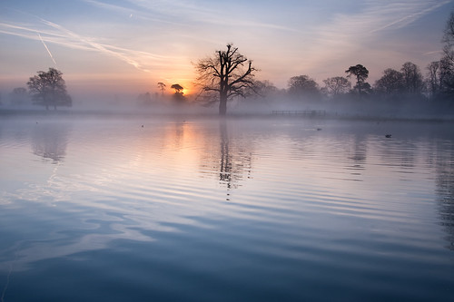 mist lake reflection misty sunrise dawn quiet tranquility ripples slough berkshire kevday tranquil langleypark