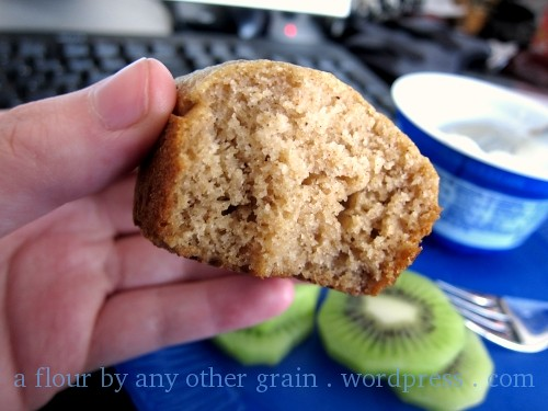 Applesauce Spice Muffin