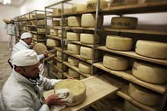 I formaggi di San Patrignano