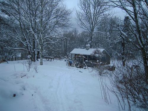 surprise snow storm