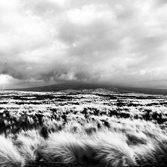 Mauna Loa, wreathed in clouds.