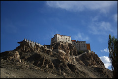 Gompa on the Hill