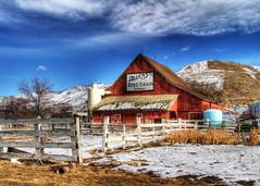 Allen's Barn