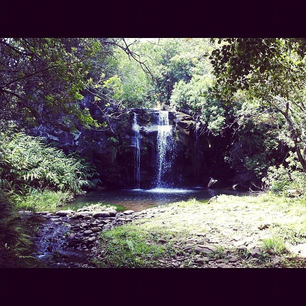 secret waterfalls of kohala definitely one of my favorite