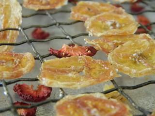 getrocknete Früchte selber machen