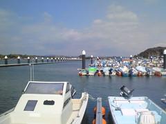 マリーナに係留されているプレジャーボート群