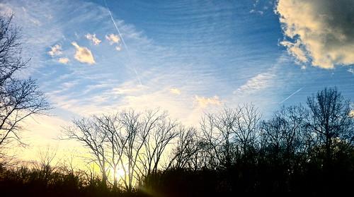 blue sunset sky cloud sun tree silhouette