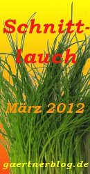Garten-Koch-Event März 2012: Schnittlauch [31.03.2012]