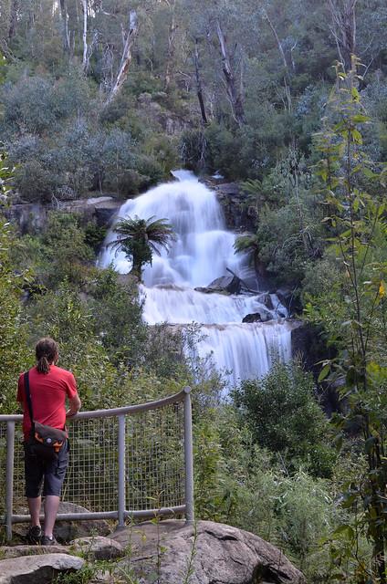 Fainter Falls - Alpine National Park