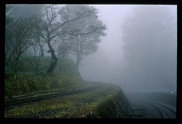 被霧包圍的一捲