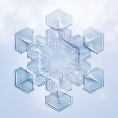 Amore / Snowflake 03