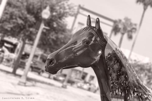 horse statue canon square downtown florida fl publicart tilted 2012 ocala dutchangle horsefever marioncounty horsestatue canonef24105mmf4lisusm marioncountyflorida ocalafl worldchamp ocalaflorida downtownsquare downtownocala rebelt1i t1i canonrebelt1i ourdailychallenge odc3 10thanniversaryhorsefever