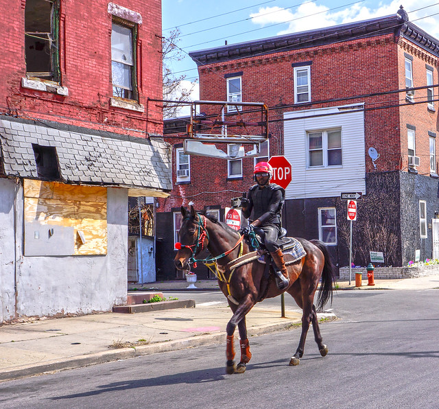Horse Riding In Philly Ghetto  Rider  Flickr  Photo