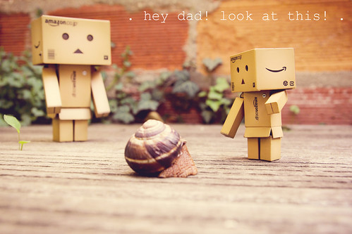 Danbo and the snail #1