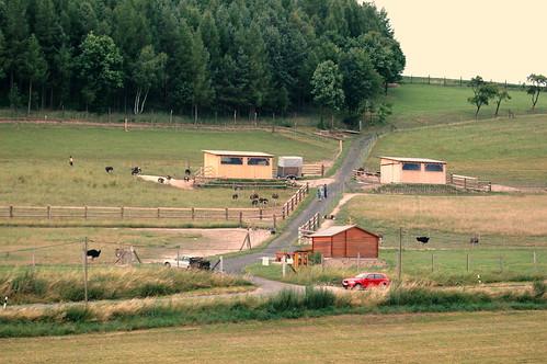 Farmgelände Straussenfarm Hellborn