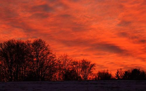 light sunset red sky tree landscape colours slovenia todays zahod grosuplje pokrajina sončnizahod drevo drevesa rdeča oranžna sončni današnji silvyp