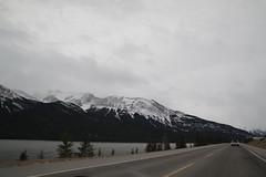 Jasper in January