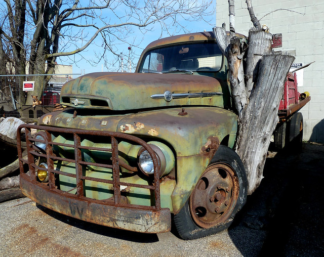 Tree Embedded Into Old Rusty '51 or '52 Ford Flatbed