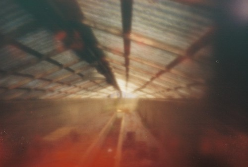 pinhole greenhouse (1)