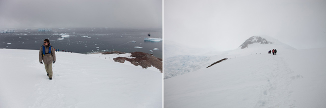 antarctica-blog-64