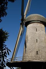 Dutch Windmills in San Francisco
