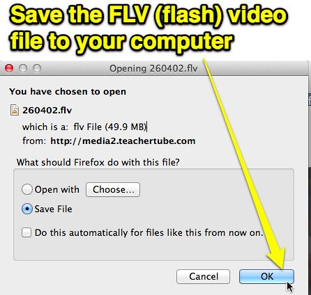 Save FLV