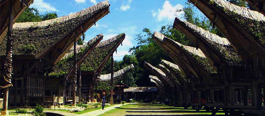 exciting cultural attractions, but different, this is the Toraja culture is preserved for thousands of years coupled with the mythical Toraja people.